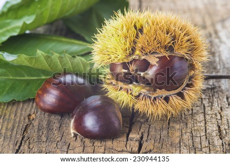 Chestnuts with its leaves and burr on a wooden background - stock photo
