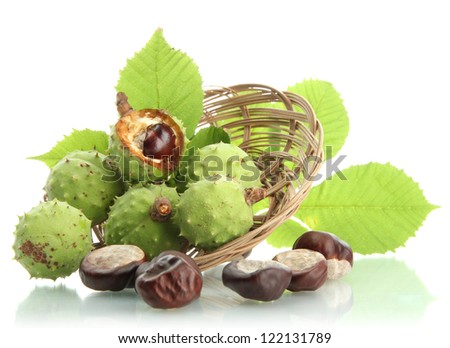 Chestnuts with leaves in basket, isolated on white - stock photo