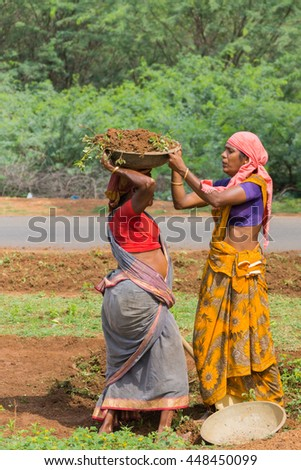 Chettinad, India - October 18, 2013: In Soorakudi hamlet a group of women employed in the NREGA scheme clean the side of the road. One woman puts a basin with dirt on top of the head of other woman. - stock photo
