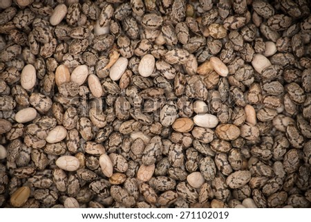 Chia seeds macro with dark vignette, top view - stock photo