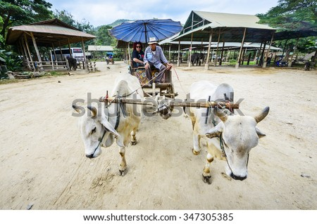 Chiang mai, Thailand - December 4, 2015: Tourists on an ox cart , located in Maetaman Elephant Camp, Chiang mai, thailand. - stock photo