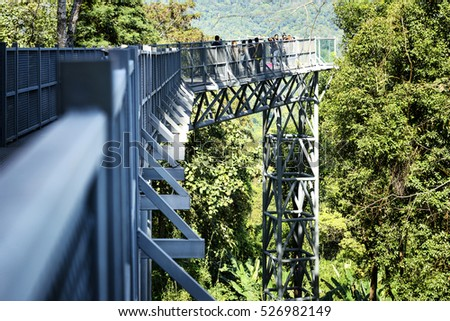 CHIANG MAI THAILAND - NOVEMBER 20, 2016 : Canopy walkway, attractions close to nature tourists come to visit.