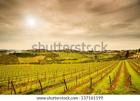 Chianti region, Panzano vineyard, trees and farm on sunset. Tuscany, Italy, Europe. - stock photo
