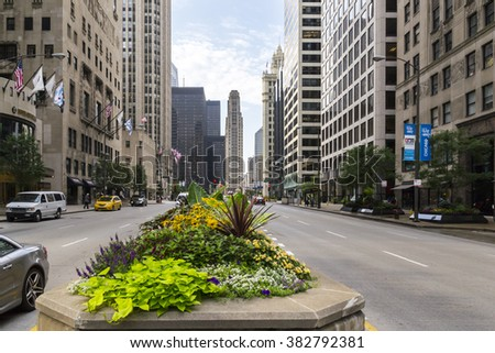 CHICAGO,USA-AUGUST 12,2013:view of flowerbed and traffic in the center of Chicago during a sunny day. - stock photo