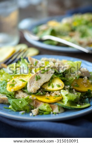 Chicken and Summer squash salad with quinoa and chives - stock photo