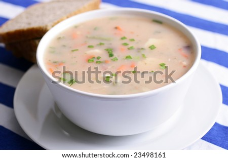 chicken and vegetable soup - stock photo
