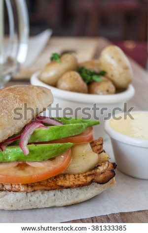Chicken Burger with frozen and fries - stock photo