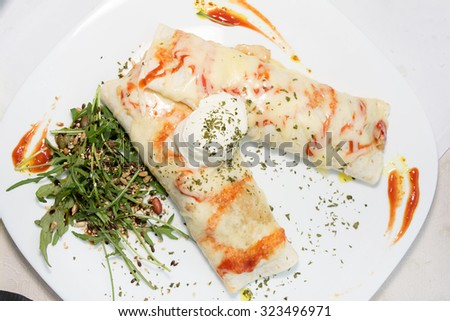 Chicken burrito with tortillas and sauce - stock photo