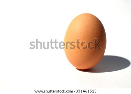 chicken egg in the white #2 - stock photo