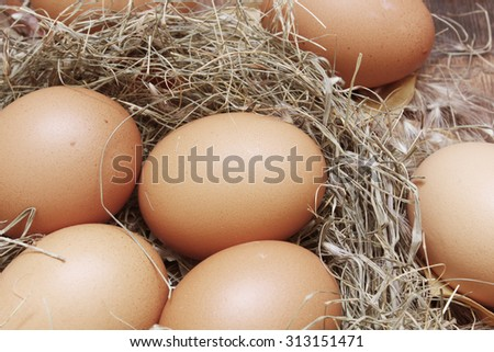Chicken eggs in a straw nest