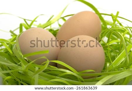 Chicken eggs on artificial grass - stock photo