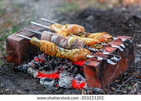 Chicken legs and pieces of pork being roasted over charcoal - stock photo