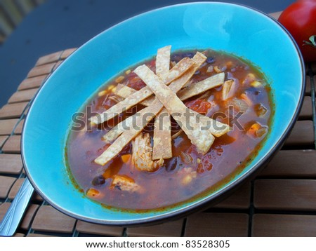 Chicken (or Turkey) Tortilla Soup - stock photo