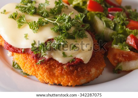 Chicken Parmigiana and vegetable salad macro on a plate. Horizontal