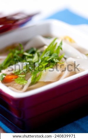 chicken pho soup with noodles bean sprouts and cilantro and vegetables - stock photo