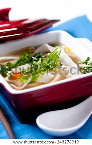 chicken pho soup with noodles bean sprouts and cilantro and vegetables
