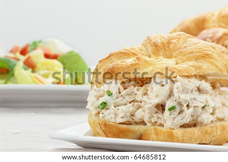 Chicken salad on a croissant bun with a healthy salad. - stock photo
