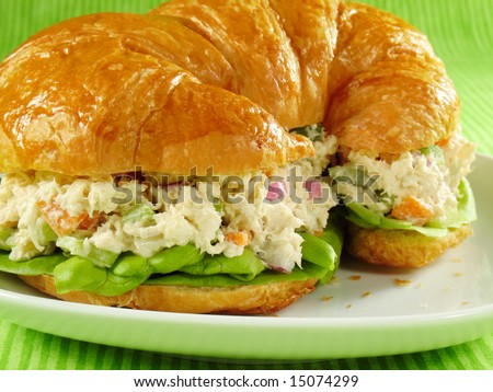 Chicken salad on a flaky butter croissant - stock photo