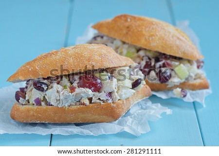 Chicken Salad Sandwich with Apple, Grape, Celery, Almond and Dried Cranberry Greek Yogurt - stock photo