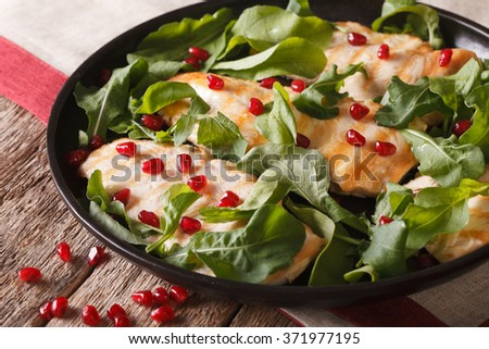 Chicken salad with arugula and pomegranate close-up on a plate. horizontal