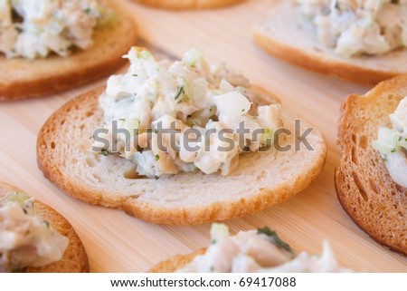 Chicken salad with celery, onion, and parsley on melba toast. - stock photo