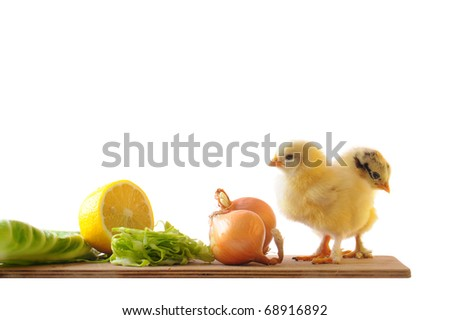 Chickens on a cutting board