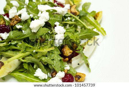 Chicory and organic rocket salad and goat cheese - stock photo