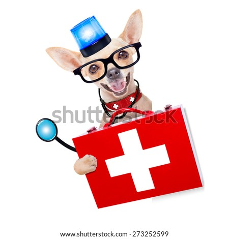 chihuahua dog as a medical veterinary emergency doctor with stethoscope and first aid kit behind a white and blank banner  and blue lights, behind white banner, isolated on white background - stock photo