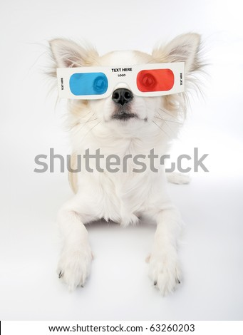 chihuahua with 3d glasses lying over white background - stock photo