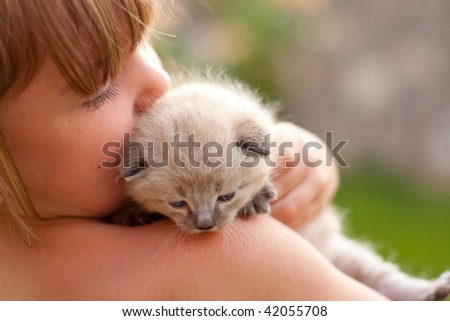 Child and a white kitten. Selective focus. - stock photo
