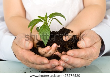 Child and adult hands holding new plant with soil - stock photo