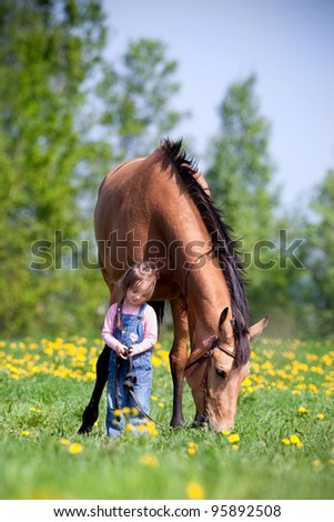 Child and bay horse in field - stock photo