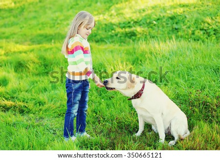 Child and white labrador retriever dog on grass in summer day