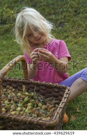 Child blond girl with wicker basket full of hazelnuts