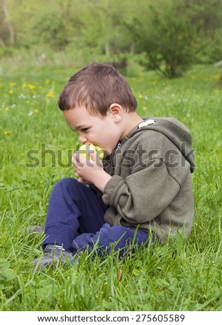 Child boy eating an apple, sitting on grass in a park in nature. - stock photo