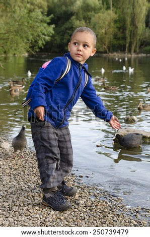 Child boy feeding ducks on pond or river in nature. - stock photo