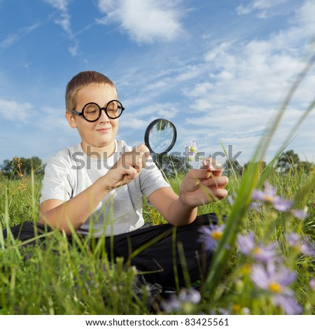 Child, examining with a magnifying glass flower - stock photo