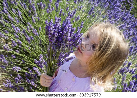 Child girl in floral field of lavender - stock photo