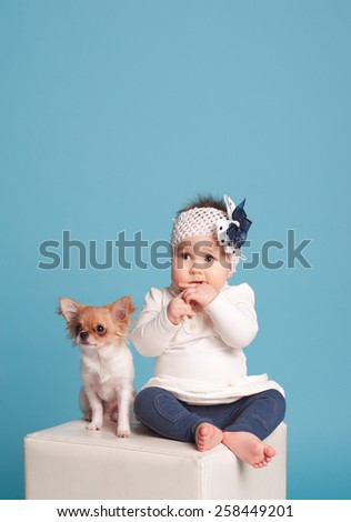 Child girl sitting on chair with puppy dog in room over blue. Wearing trendy clothes. Friendship. Togetherness. Childhood. - stock photo