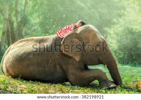 Child girl sleeping on baby elephant