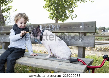 child giving his white and black french bulldog a biscuit sitting on a bench near his bike at countryside - focus on the child face - stock photo