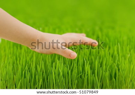 child hand and green grass closeup