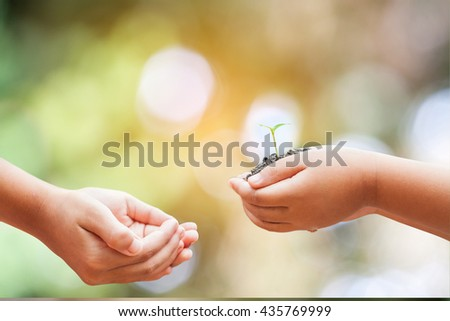 child hands holding soil with sprout on green background
