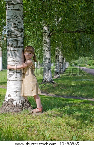 Child holding birch tree with love in the woods looking at you - stock photo