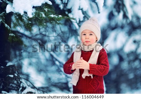 child in a red sweater in the winter woods - stock photo