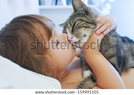 Child is kissing a cat - stock photo