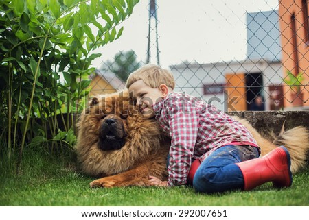 Child lovingly embraces his pet dog. Chow Chow. Outdoor portrait - stock photo