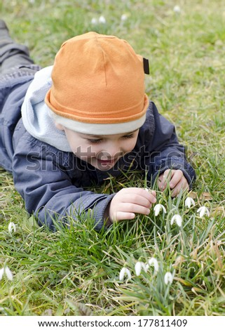 Child lying on grass in early spring exploring snowdrops flowers.  - stock photo