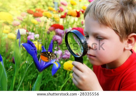 Child observing nature - stock photo