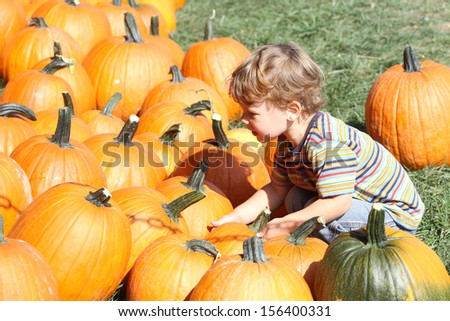 Child picking a pumpkin - stock photo